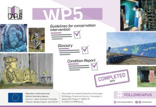 13106Work Package 5 (Implementation of a Conservation Methodology)- Final Report